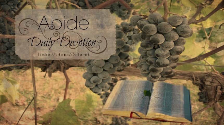 Abide Devotion Header